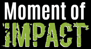 Moment of Impact Book